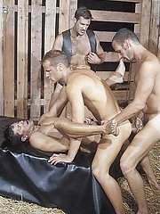 Thom Barron::Chris Rock::Lorenzo Donado::Ross Vincent in Man-lover XXX Pictures