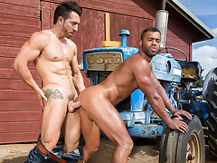 Saddle Up, Scene 05