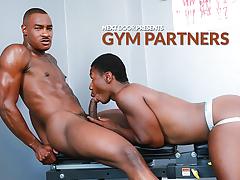 Gym Assistants