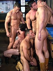 Chris Wide::Edu Boxer::Dean Phoenix::Jake Andrews::Marcus Iron::Mike Dasher::Sam Shadon