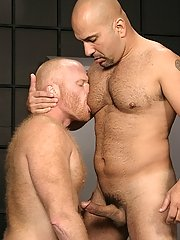 Rough locker room copulation with dualistic musclebound bear studs