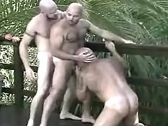 Lusty placid gays suck and lick in group
