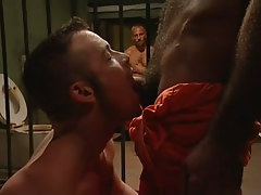 Hairy gay chap sucked by cellmate