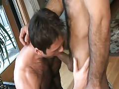 Hairy gay sucks appetizing penis