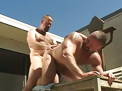 Mature muscle bears fanatical fuck in doggy style