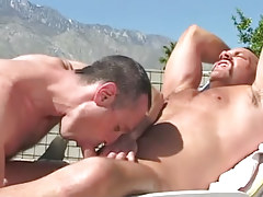 Bear fruit sucked by horny seasoned stallion outdoor
