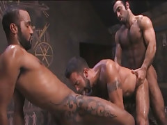 Tattooed Arabian homosexual guys download male in pyramid