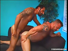 Bear boy bonks muscle dilf in doggy style