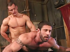 Muscle hunk jazzes bear dilf in doggy style