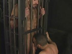 Hairy seasoned faggot sucked in cage