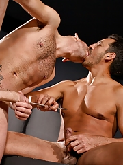 Circle Jerk Boys. Gay Pics 4